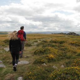 Project helps Dartmoor National Park to prepare for population rise