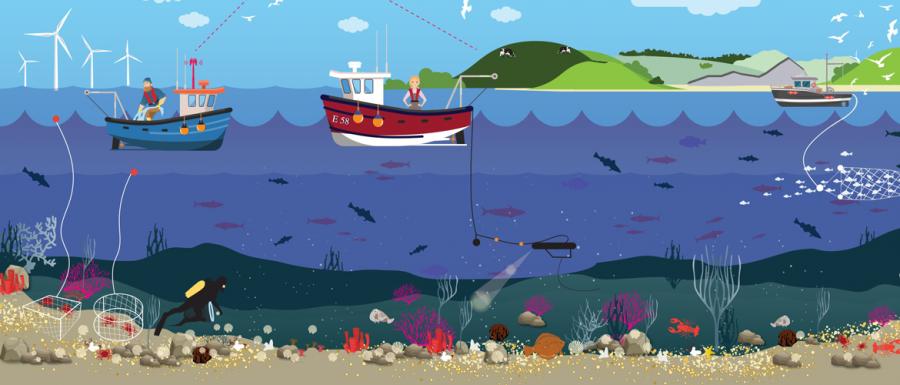 Illustration of busy seascape, fisheries, etc - Credit Lauren Porter