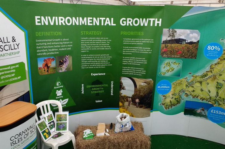 Mainstreaming Environmental Growth (MEG)