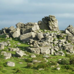 New webinar discusses the Dartmoor National Park Naturally Healthy Project