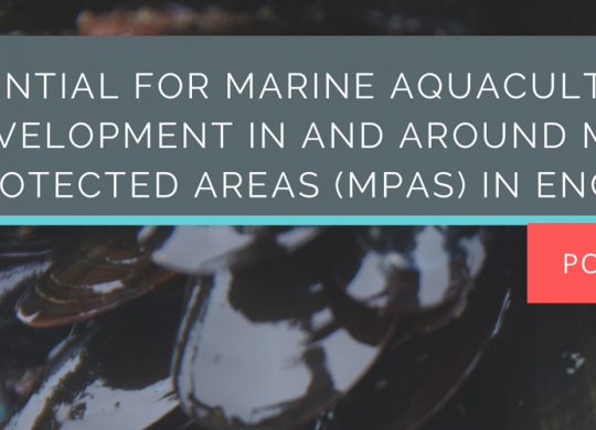 Mariculture_and_MPA_Policy_Brief-1