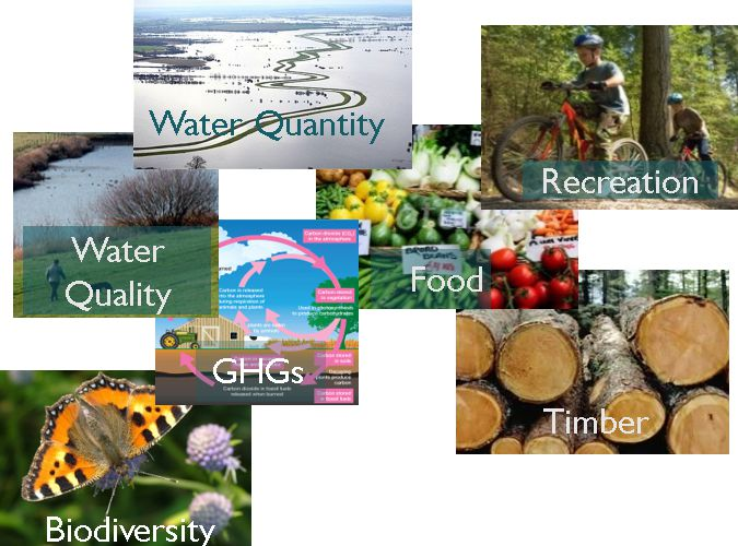 Natural Environment Valuation Online tool (NEVO)