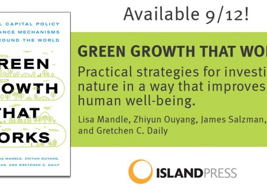 Cover of Green Growth That Works