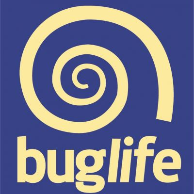 buglife-main-logo-01